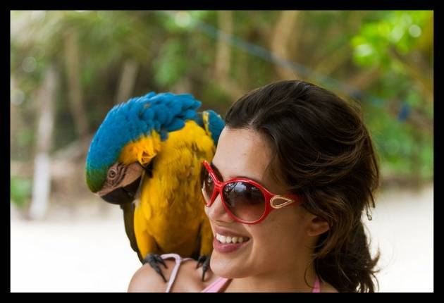 colombian-women-bird