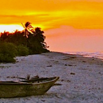 Best Colombian Beaches: Palomino